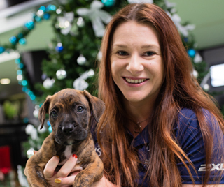 susan seipel with boston the rspca puppy