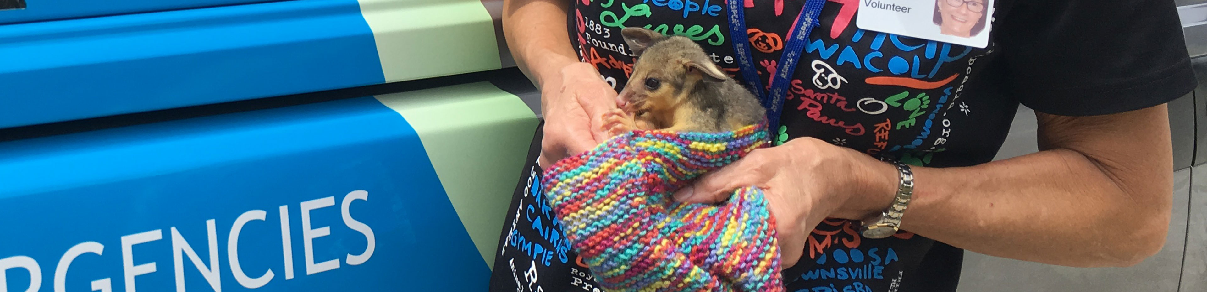 RSPCA animal ambulance driver holding baby possum