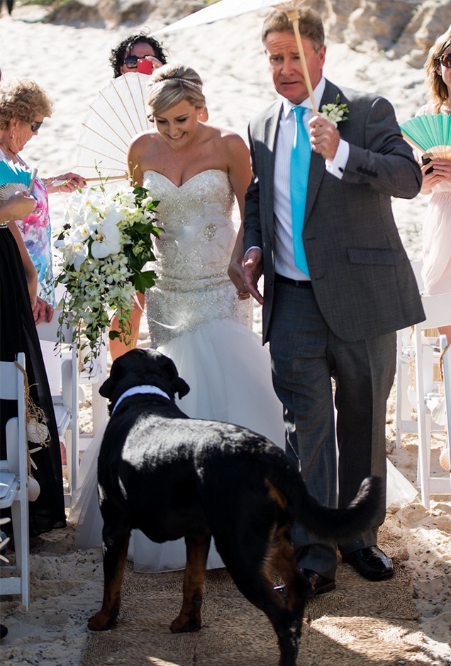 happy couple at wedding with their dog